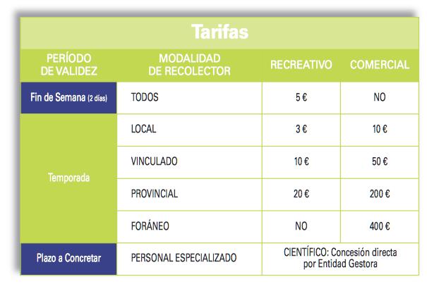 precios_recoleccion_setas